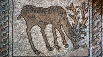 Plovdiv. Mosaico de la Basílica Paleocristiana