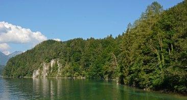 Alpsee. Costa del lago y Bosque