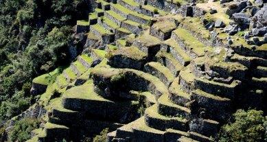 Machu Picchu. Terrazas de Cultivo bajo el Barrio Sagrado