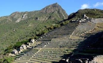 Machu Picchu. Terrazas de Cultivo y Cumbre del Machu Picchu