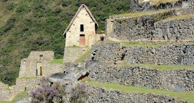 Machu Picchu. Terrazas de Cultivo y Colca