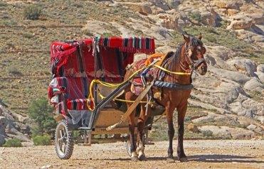 Carros-taxi para la visita