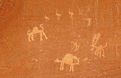 Petroglifos de camellos y caza de avestruces