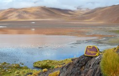 Vista de la Laguna Colorada