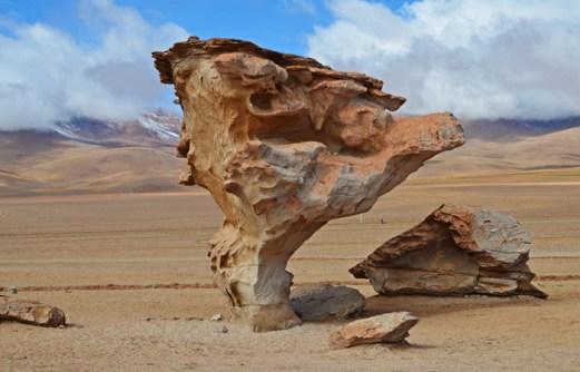 Desierto de Siloli - Árbol de Piedra
