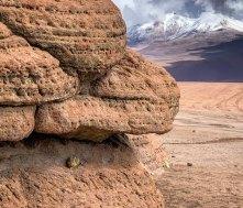 Desierto Siloli - Vizcacha