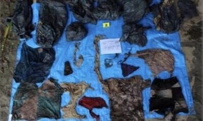 Los cráneos en Veracruz