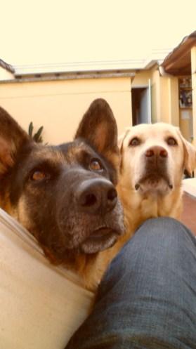 Paco y Lola en Los Colores