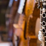 stemme sjela. klarinett og hardingfele
