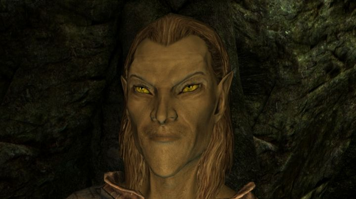 Image result for skyrim elf