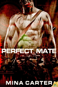 Perfect Mate – Mina Carter