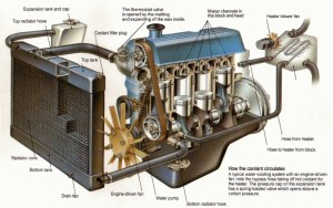 Care of the cooling system  CAR magazine