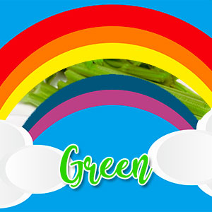 green veggie plate ideas