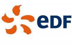 logo-edf_113880_wide-e1529483876417 (1)