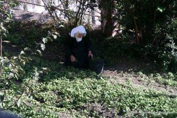 una monaca al lavoro