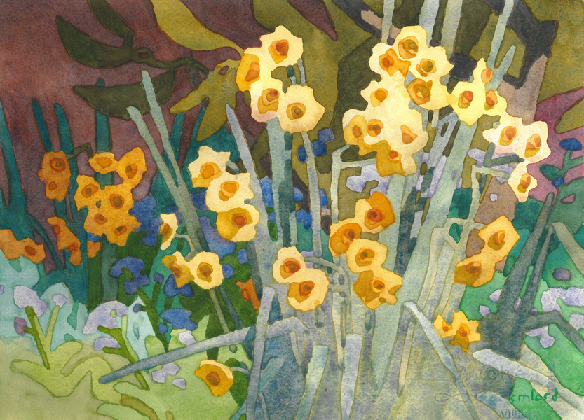 CM Lord - Golden Narcissus - small