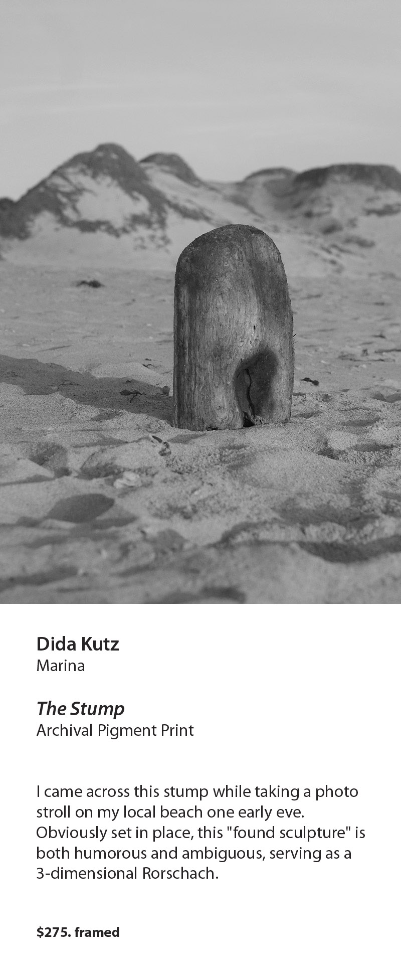 dida1