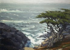 Farina, Mark_Point Lobos Headlans Cypress