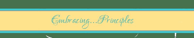 theme-principles
