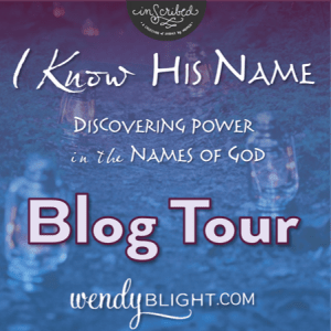 Wendys blog tour button