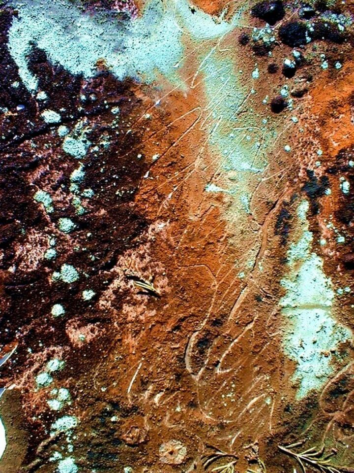 terre e resine naturali su cartoncino - 35 x 50 cm - 1999
