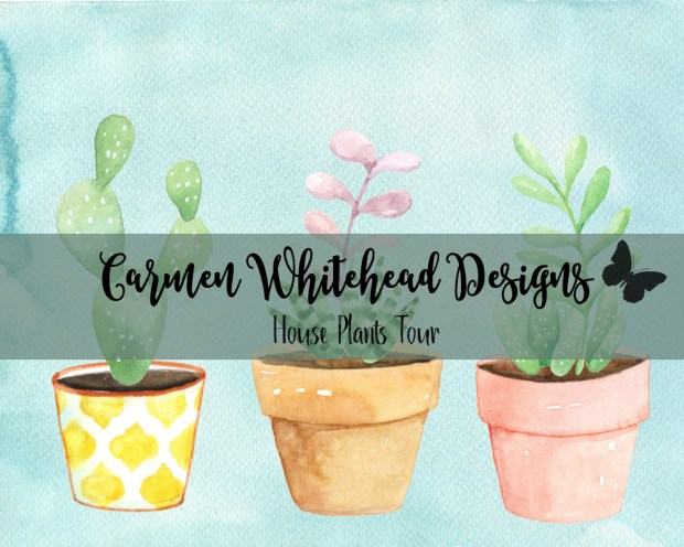 House Plants Tour - Carmen Whitehead Designs