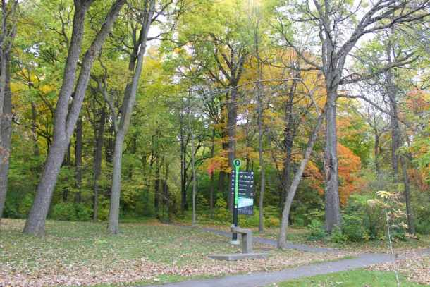 where-to-run-in-montreal-7
