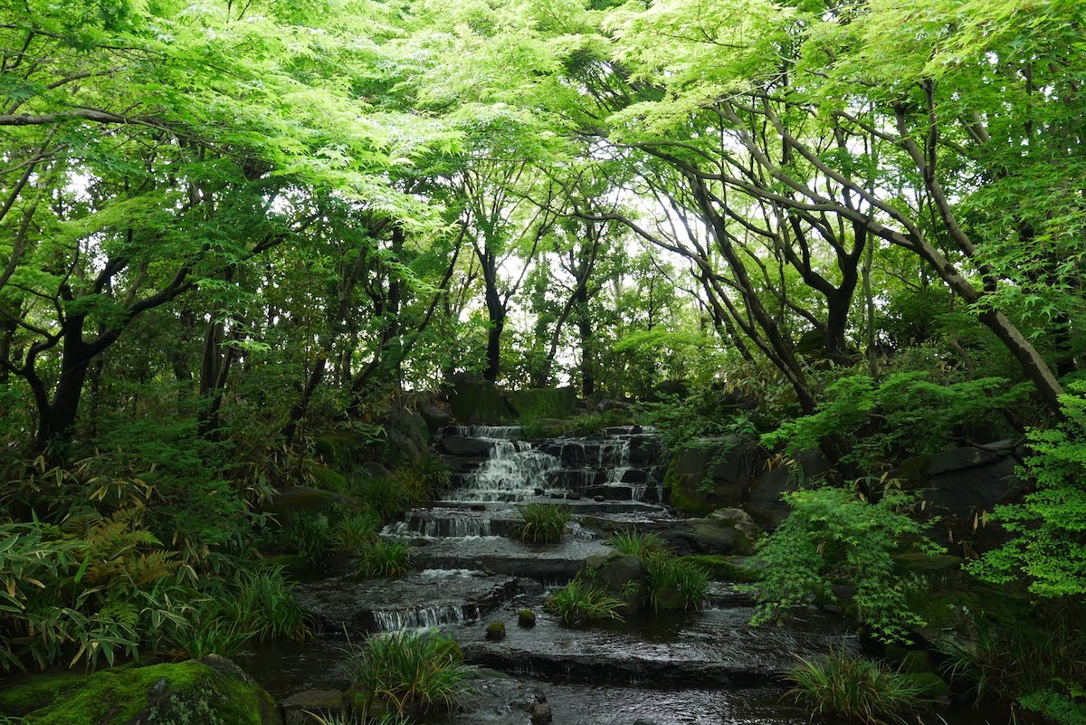 jardins château Himeji