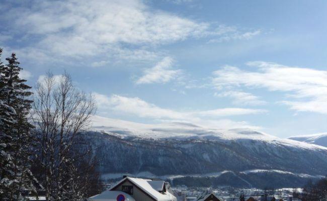 Avis De L Ami Hotel Auberge De Jeunesse De Tromso