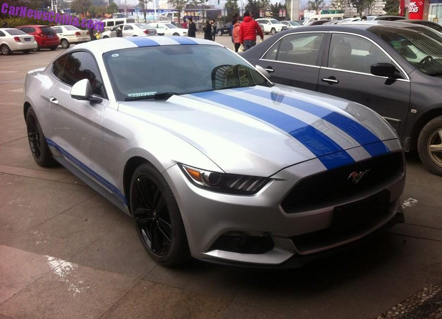 ford gt american flag with 2015 Mustang Silver With Blue Stripes on 2016 Ford Mustang Vinyl Decals 539405 further Ford Emblem Overlay Set together with Corvettegirls together with Lincoln Continental Next Presidential Limousine moreover 2015 Mustang Silver With Blue Stripes.