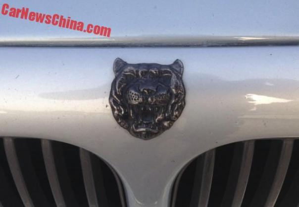 jaguar-sport-china-6