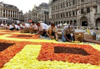 Brussels Grand Place Flower Carpet 2020 | Belgium, Dates ...