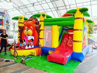 Lion Bouncing Castle Rental