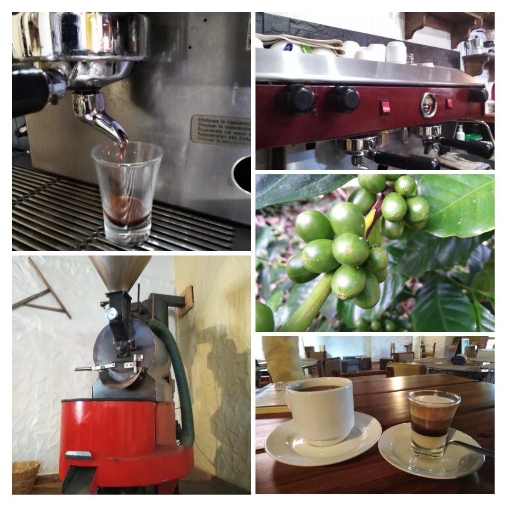 El café de consumo está destinado para el consumo masivo y el café especial, para un pequeño segmento del mercado de consumo de café.