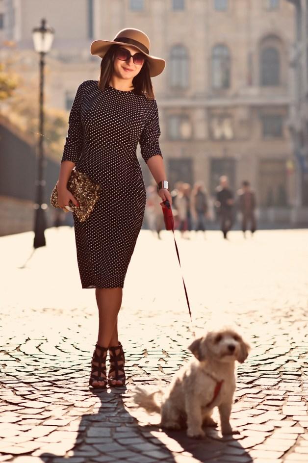 dog-in-style-high-street-cardigan