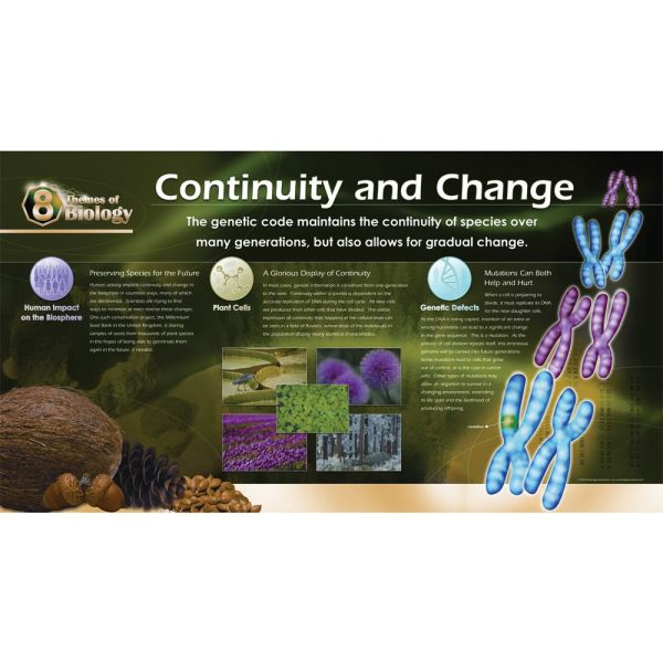 8 Themes Of Biology Poster Set