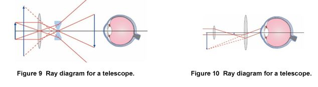telescope optics ray diagram labeled of the hand human eye | carolina.com