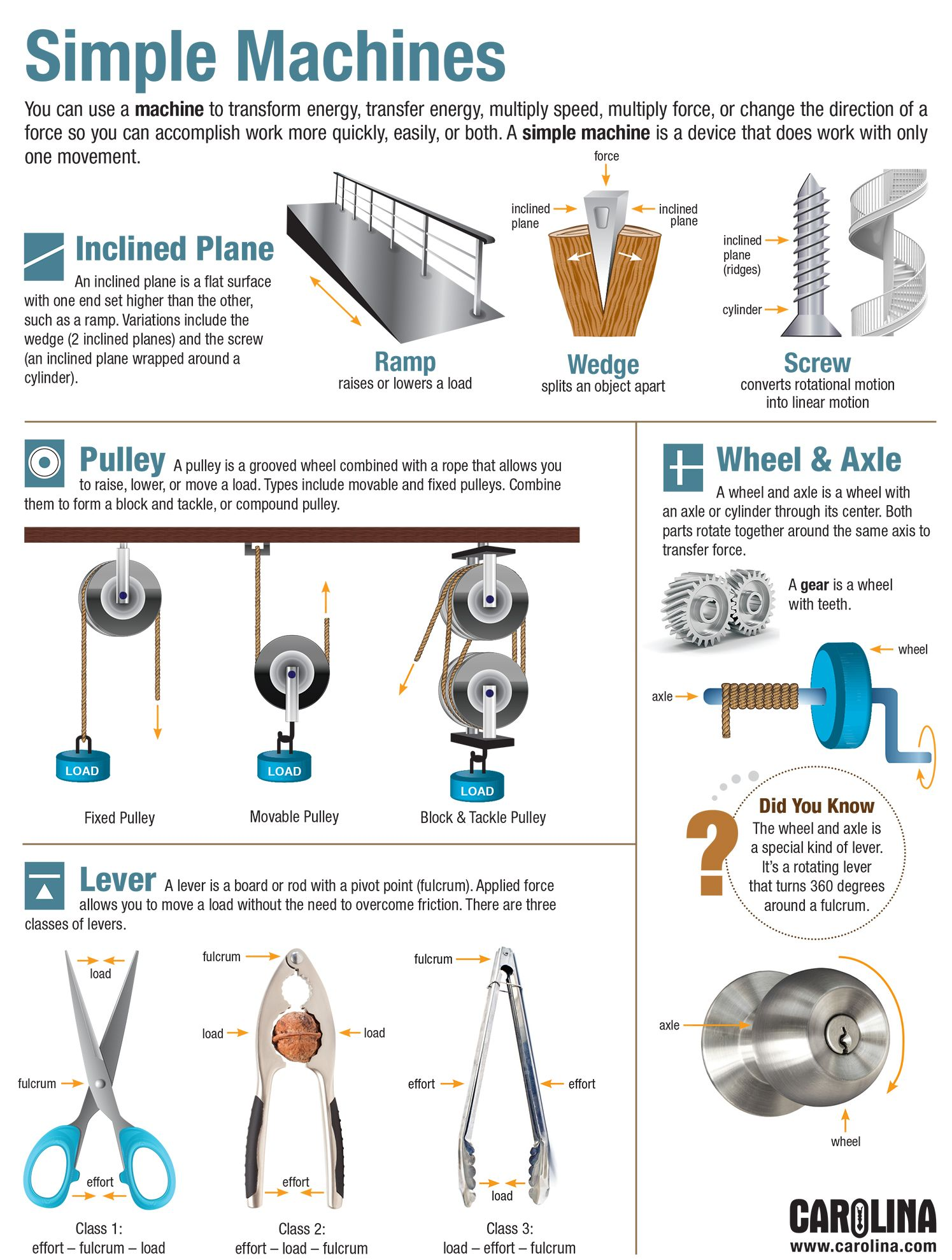 Infographic Simple Machines