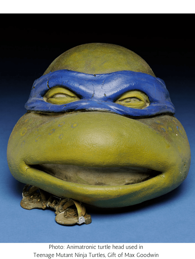 Museum Showcases Cape Fear Film History, Photo- Animatronic turtle head used in Teenage Mutant Ninja Turtles, Gift of Max Goodwin