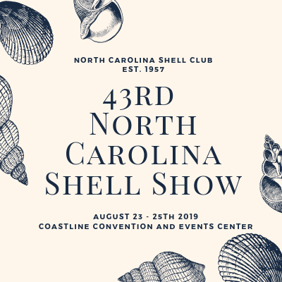 43rd North Carolina Shell Show