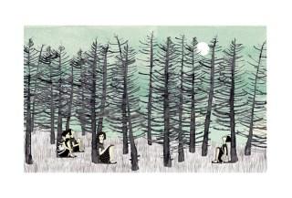 Silencio boreal
