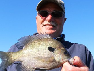 Deep holes in big, open-water areas of Lake Wateree hold bream before they move up in May.