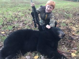 Arliss Levi bear