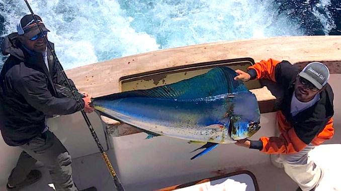 North Carolina fishing report