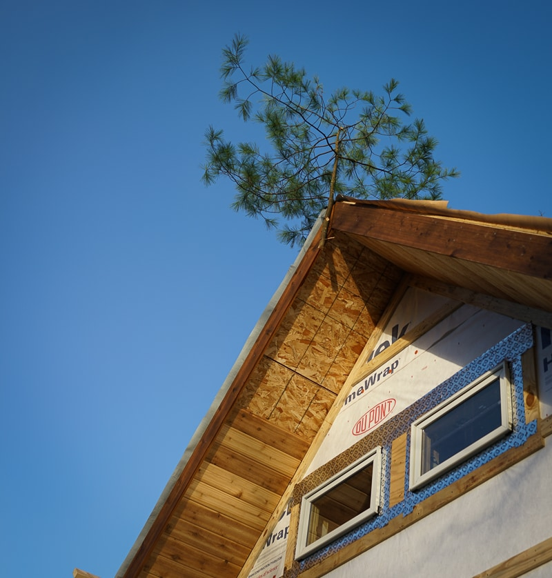 Why is that tree on the roof and other quirky timber framing traditions  Carolina Timberworks