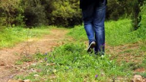 stock-footage-beautiful-girl-walking-on-the-path