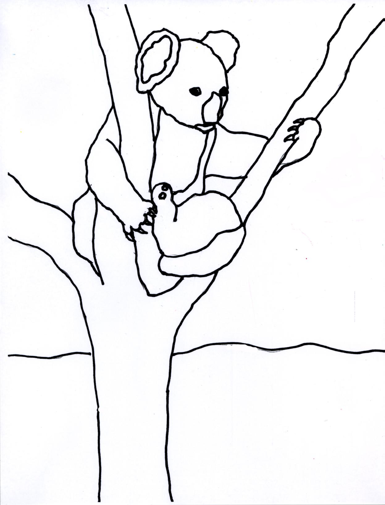 A Koala's World