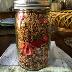 The BEST Fruit & Nut Granola