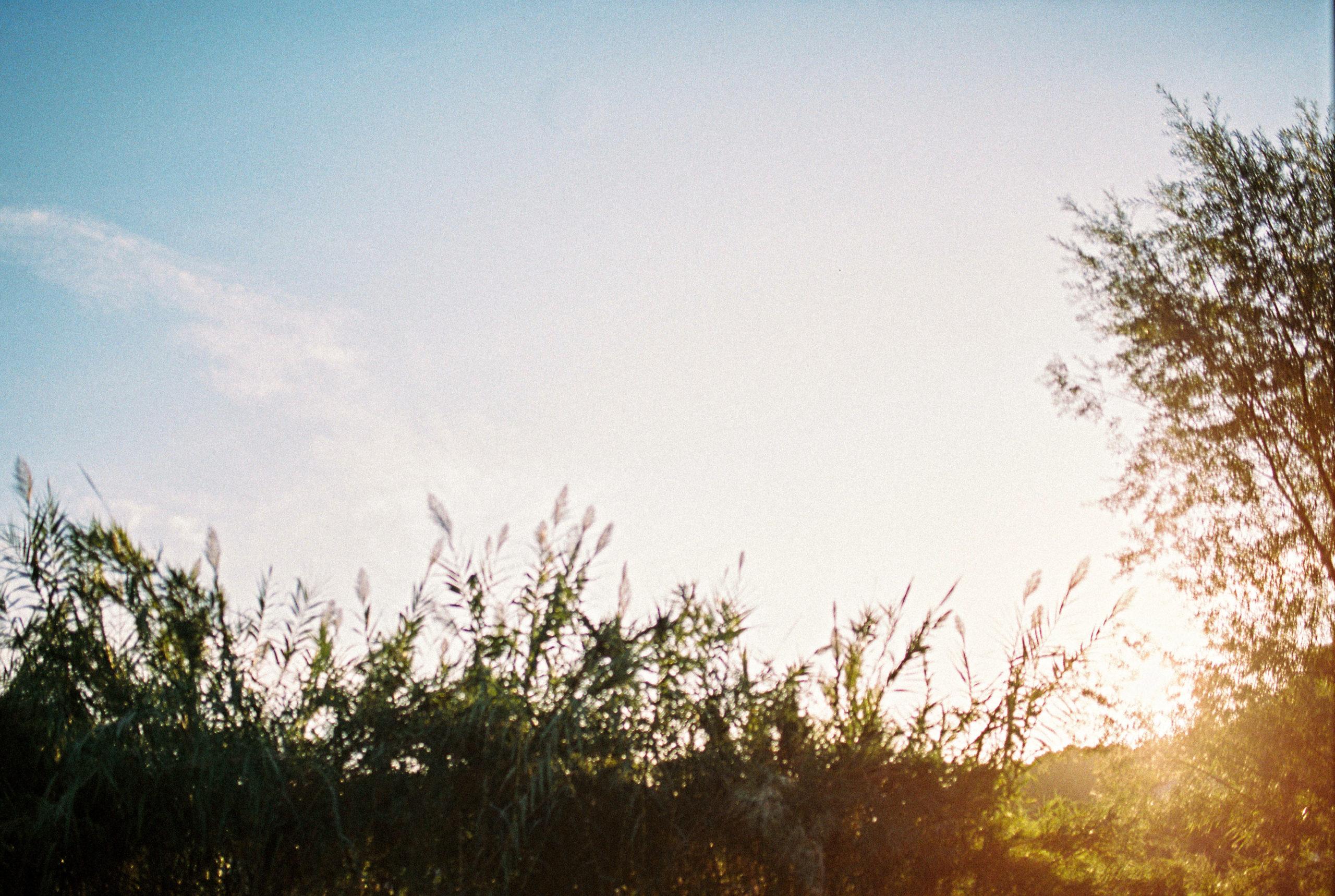 auribeau sur siagne - caroline liabot photographe - tourisme cote d'azur - photographie argentique - portra 400 - pays de grasse - photographe famille grasse