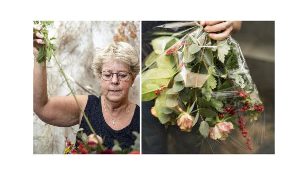 bloemenminiatuurnatuurklein